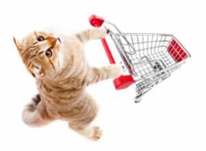 Cat pushing shopping cart.